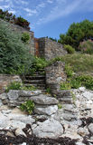 Stone steps Stock Image