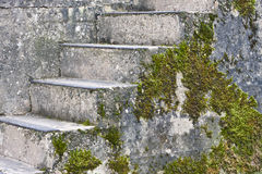 Stone steps with moss Stock Photos