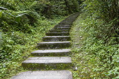 The stone steps in  mountain Royalty Free Stock Photo