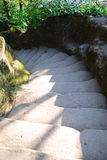 Stone steps. Narrow stone steps going round with trees on the sideway stock photography