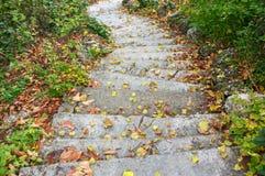 Stone steps Royalty Free Stock Photos