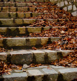Stone Steps Stock Photography