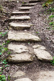 Stone steps from ravine Royalty Free Stock Photography