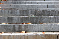 Stone steps with scattered leaves Royalty Free Stock Photo