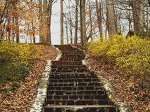 Stone Steps. A set of steps in Miller Park leading up from a walking trail (Winston-Salem, North Carolina royalty free stock photos