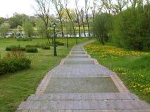 Stone steps in spring City Park Stock Image
