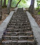 Stone steps in the woods on the monastery grounds. Royalty Free Stock Photo