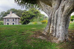 Stone Store, Kerikeri, New Zealand Royalty Free Stock Photo