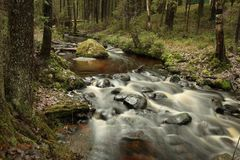 Stone stream in the forest. Stone stream fast flow in the forest, long exposure stock images