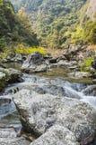 Stone in stream stock photos