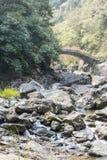 Stone in stream Stock Photo