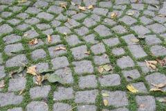 Stone street Royalty Free Stock Image