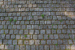 Stone street. Cobble stone street with grass Stock Photos