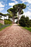 Stone street leading to trees in Palatine Hill at Rome Stock Photography