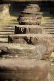 Stone Stumps Stock Image