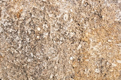 Stone surface. Close up texture of natural stone Royalty Free Stock Image