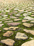 Stone Surface 3. Portrait photo of random stone paved surface with shallow focus royalty free stock photos