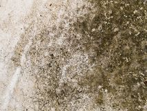 Stone surface Royalty Free Stock Photo