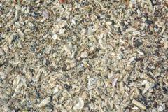 Stone surface on beach Royalty Free Stock Photo