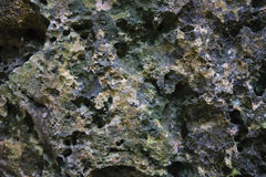 Stone surface Stock Images