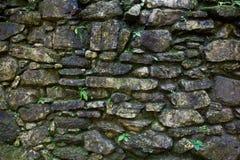 Stone surface texture Stock Photo