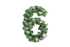 Stone symbol 6 covered with ivy, isolated Stock Photos