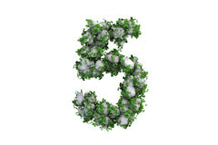 Stone symbol 5 covered with ivy, isolated Royalty Free Stock Photos