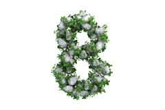 Stone symbol 8 covered with ivy, isolated Royalty Free Stock Images