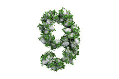 Stone symbol 9 covered with ivy, isolated Stock Photo