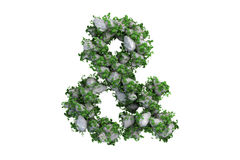 Stone symbol covered with ivy, isolated Stock Photos
