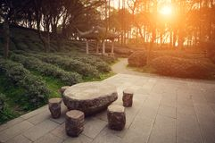 Tea garden in China at sunset. Stone table and chairs in the tea garden in China at sunset Royalty Free Stock Photography