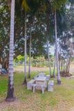 Stone table set under coconut tree Stock Photography