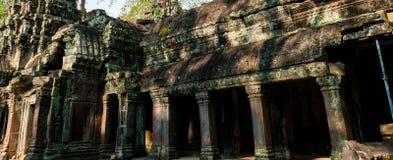 Stone temple Ta Prohm Angkor Wat Stock Photo