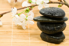 stone terapię Obraz Royalty Free
