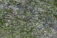 Stone texture. Green gray mineral stone texture Stock Photos