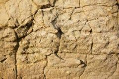 Stone texture. Stock Photos