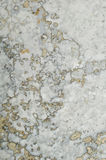 Stone Texture Stock Photos