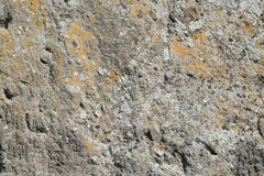 Stone texture. Rock with moss Royalty Free Stock Photo