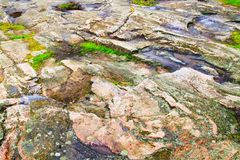 Stone texture as abstract grunge rough background. Close-up view of fjord shore. Natural granite hard rock surface. Multicolor old lichen and moss on surface Stock Photography