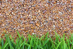 Stone texture background and green grass. Stock Photo