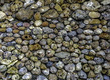 Stone. Texture for backgrounds Stock Photos