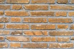 Stone Texture. Close-up image Royalty Free Stock Photo