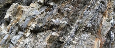 Stone texture. It could be good background Royalty Free Stock Image