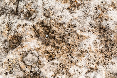Stone Texture. A Stone Texture for 3D or background Stock Photo