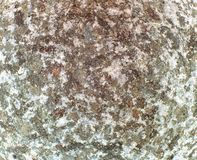 Stone texture detailed close up royalty free stock images