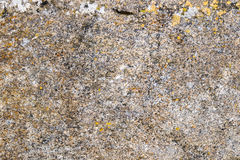 Stone texture. Texture of a granite stone with different colors Stock Images