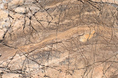 Stone texture. Portrait of a red stone. stock image