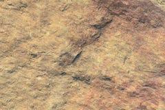 Stone Texture Series Stock Photos