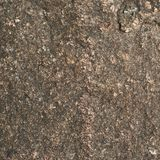 Stone texture surface Stock Photo