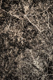 Stone texture on wall as background Stock Photography